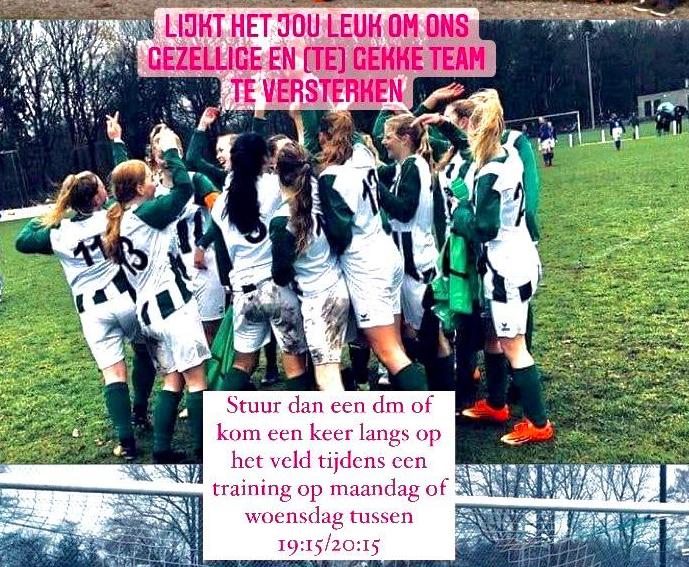 Team ST VAKO / Tynaarlo Vrouwen 2 zoekt versterking!